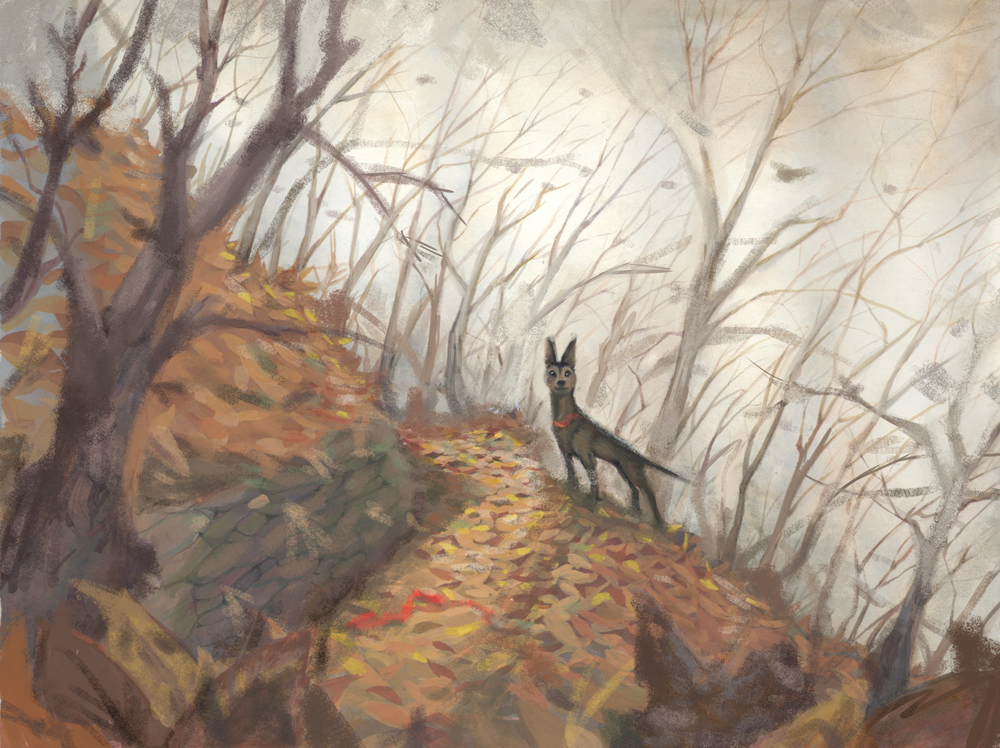 dog-woods-sketch